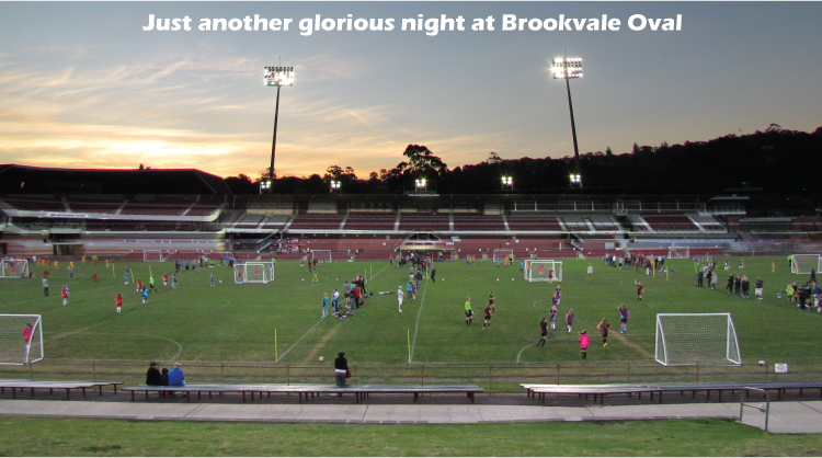 FootballSSG is played at the best venues with the best playing surface and the best lighting. This photo taken at Brookvale Oval, October 2012